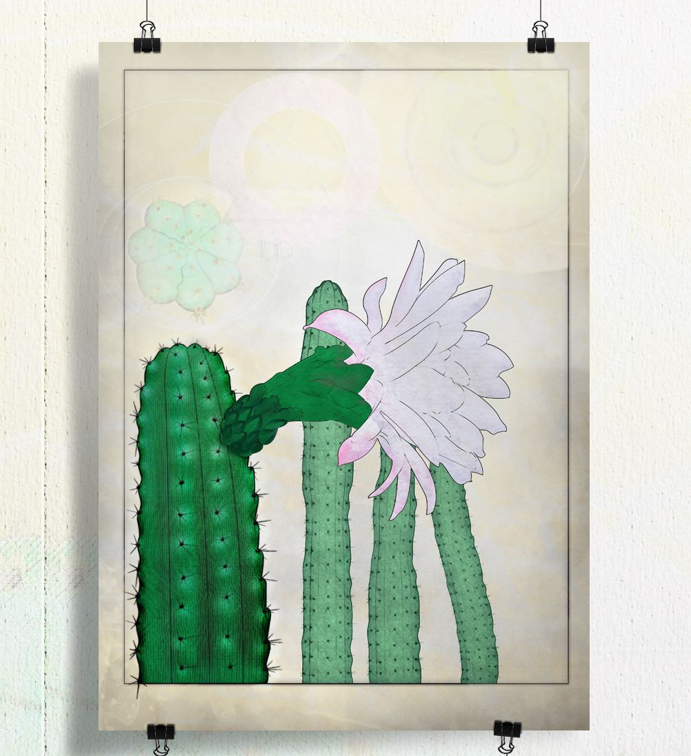 Cactus_Botanical__print_Poster_art_by_Henry-Ryder_sml